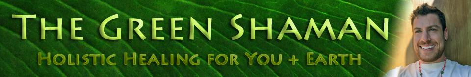 http://shaman.natemetz.com/wp-content/uploads/2017/05/webHeaderNarrow.jpg